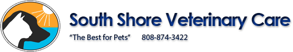 South Shore Veterinary Care